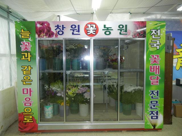 꽃 쇼케이스